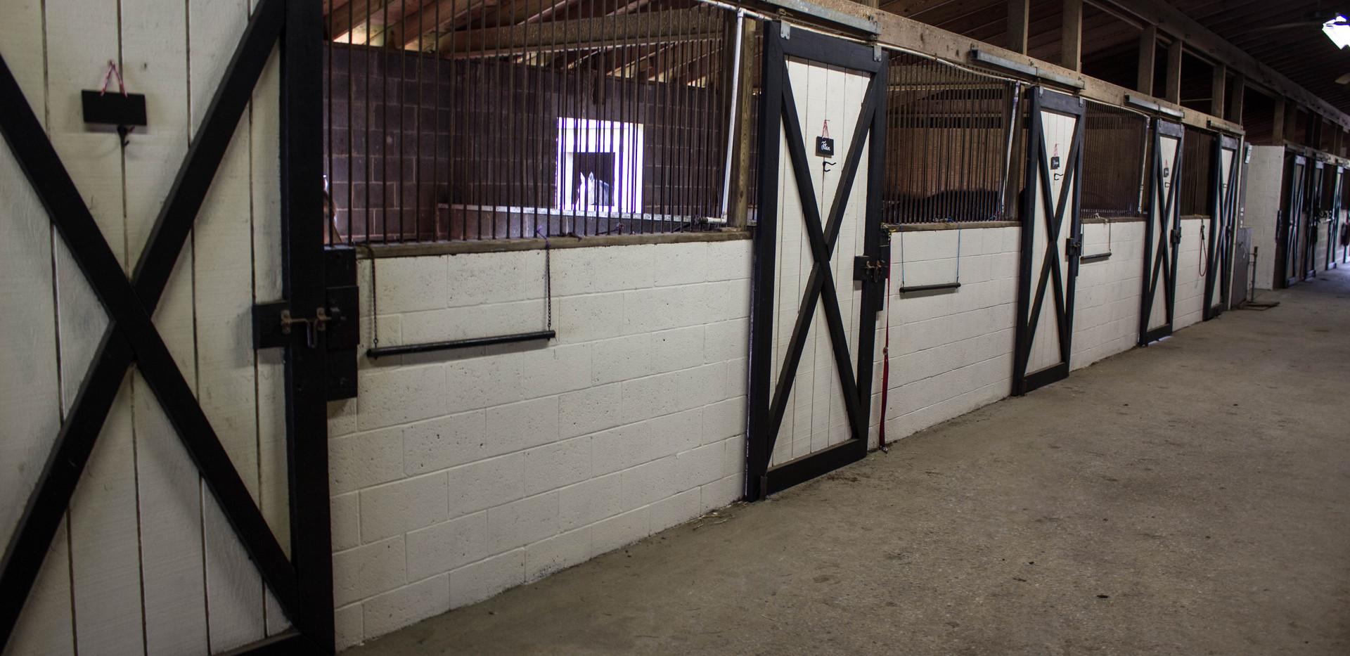 Front Stalls