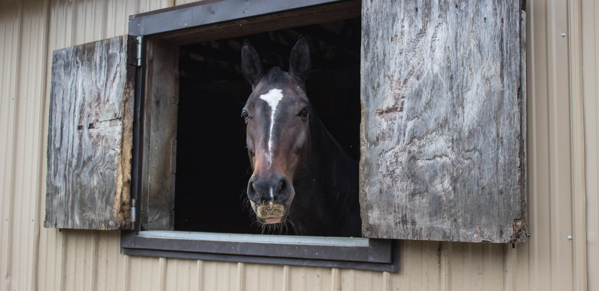 Side Stall