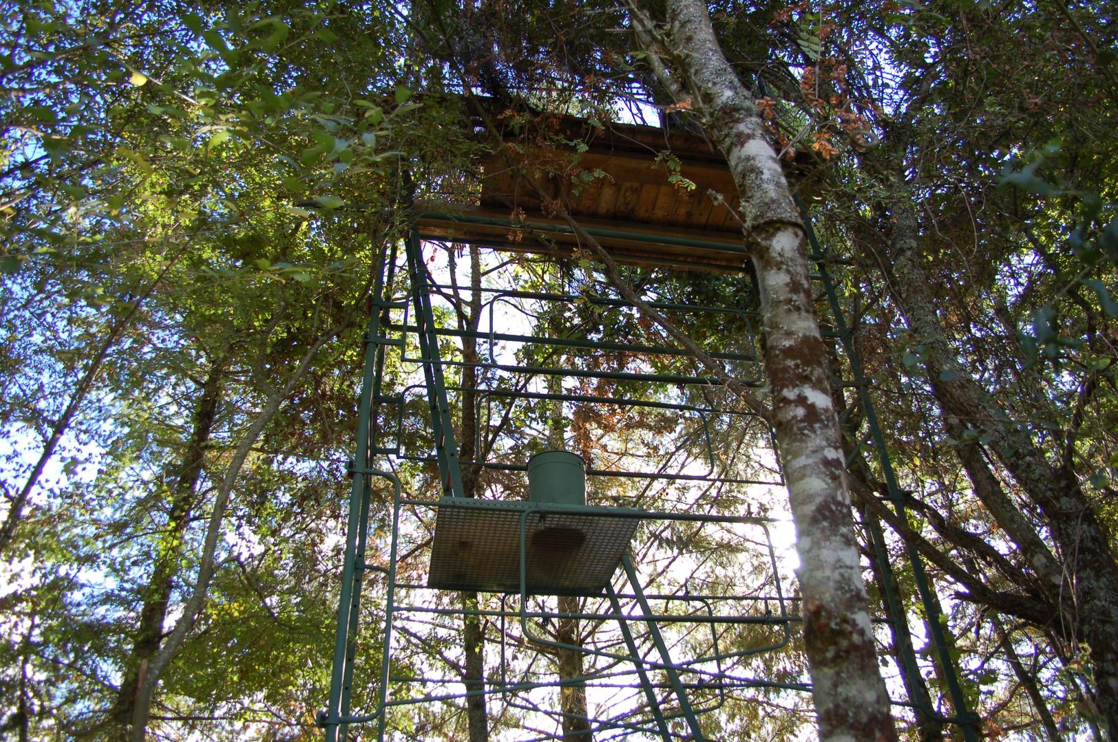 Pylone de chasse à louer Sologne
