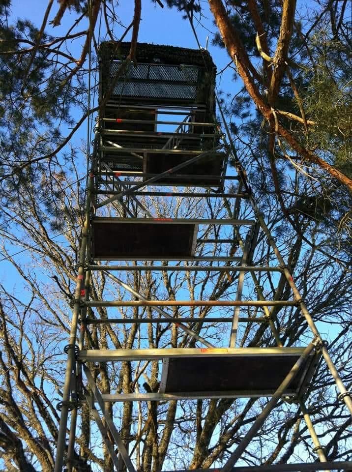 Location poste de chasse palombes Sologne