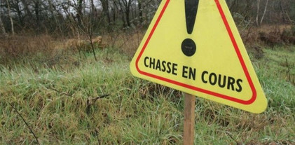 Chasse Grand Gibier Sologne