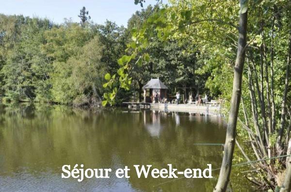 Séjour de Chasse en Sologne Petit Gibier et Migrateurs La Briganderie