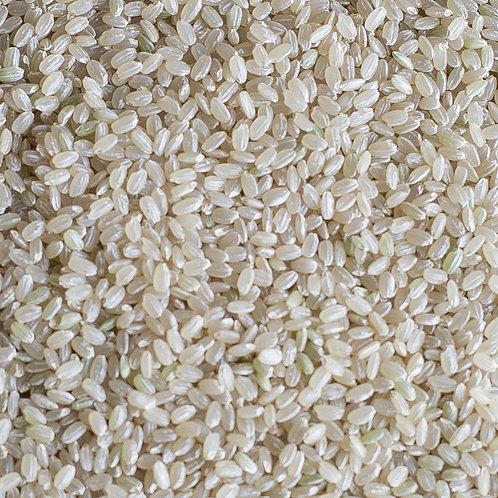 松岡さんちの玄米「にこまる」
