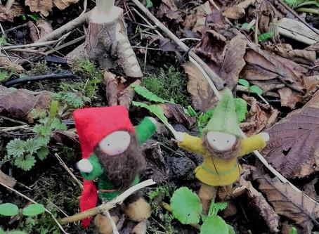 Into the Wild Wood celebrates Spring