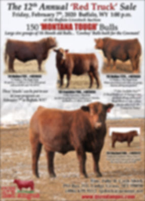 TJS Prairie Star Ad - Jan 2020.jpg