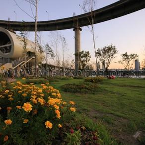 สวนตุกซอมฮันกัง (Ttukseom Hangang Park)