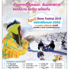 เทศกาลหิมะเมษา 2562 (April Snow Festival 2019)