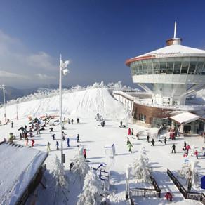 เทศกาลสกีเกาหลีสำหรับชาวต่างชาติเปิดให้บริการที่จังหวัดคังวอนโด