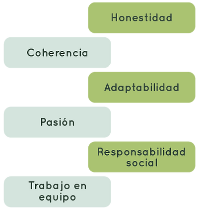 valores-05.png