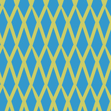 Net yellow and blue