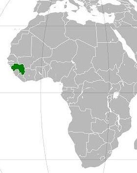 ギニア観光ならイヌワリアフリカ