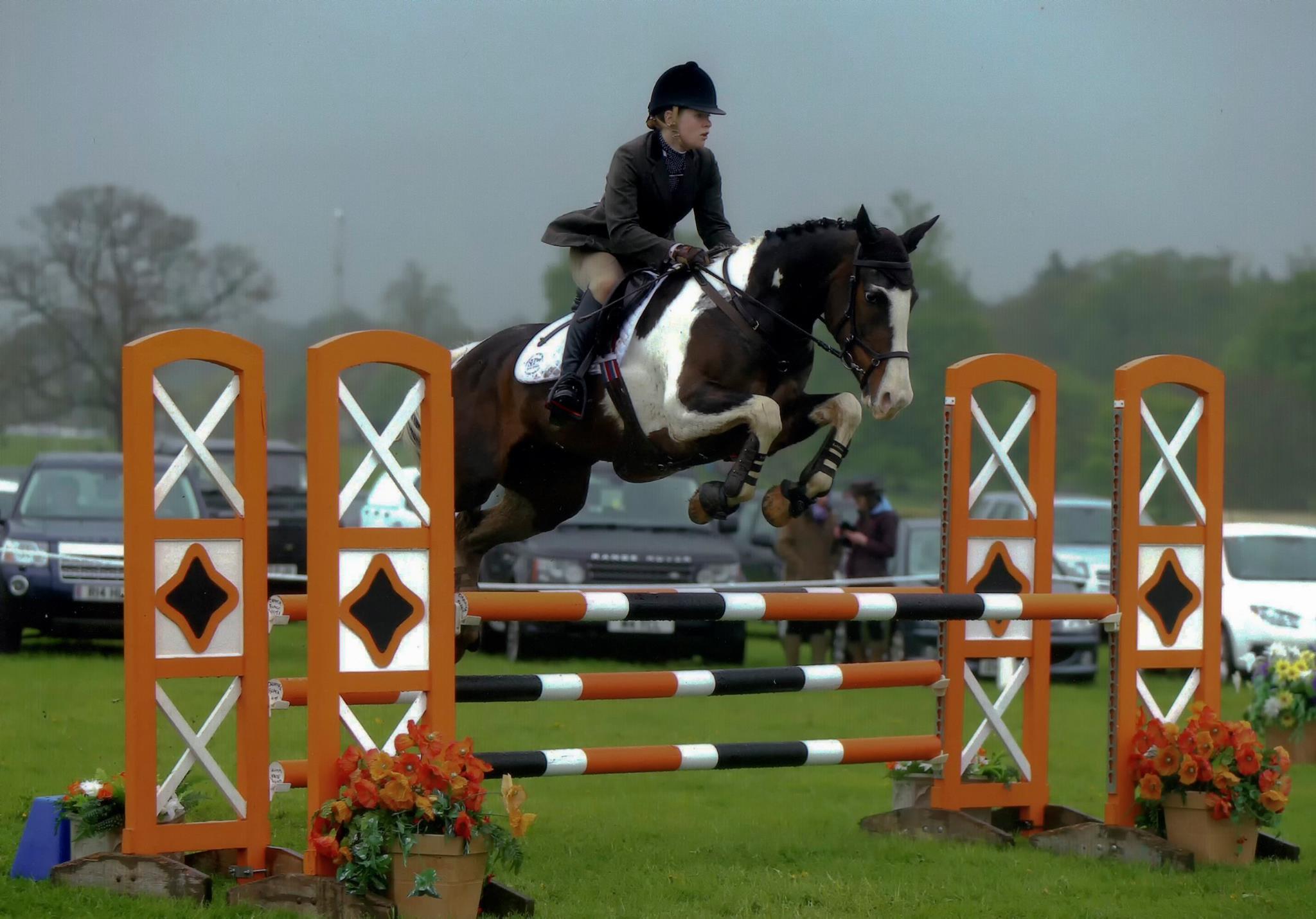 Equestrian Services