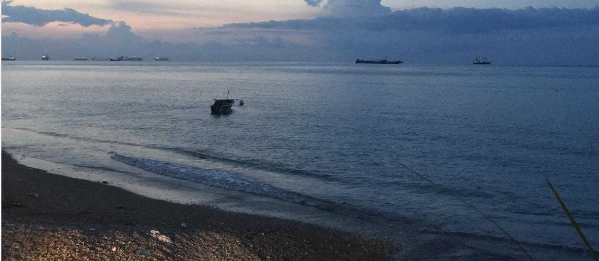 Timor beach.png