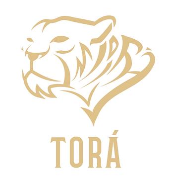 Torá Branding 1-01_edited.png