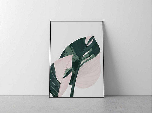 Philodendron Princess Print