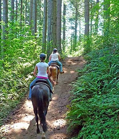 trail riding on horseback