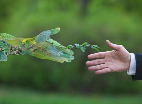 Industriales afiliados a la ANIPAC ratificaron su responsabilidad con el medio ambiente