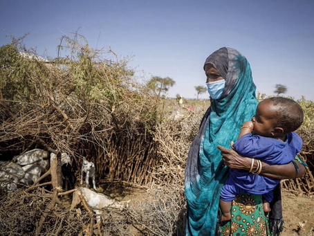 FAO prevé aumento en inseguridad alimentaria en 23 países por combates, bloqueos y Covid-19