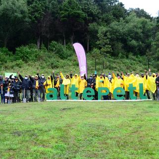 Celebran Día del Árbol plantando 53 mil plantas en 4 alcaldías de la CDMX
