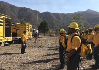 Informa Conafor atención a incendios forestales en Arteaga y Santiago