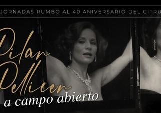El CITRU presentará la Galería virtual: Pilar Pellicer, a campo abierto