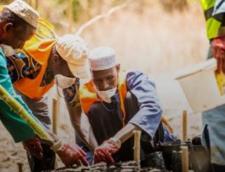 Banco Mundial anuncia Plan de Acción sobre Cambio Climático 2021-2025