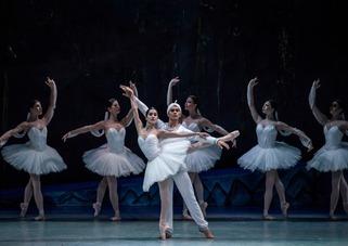 Companía Nacional de Danza anuncia su Programa Contemporáneo