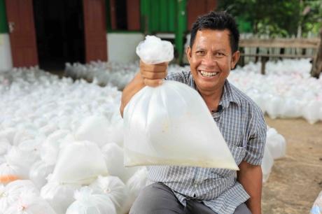 FAO insta a aprovechar los recursos acuáticos para aumentar la producción mundial de arroz