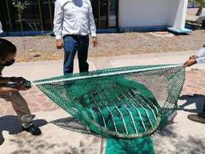 Capacitan sobre construcción correcta de dispositivos excluidores de tortugas marina y peces