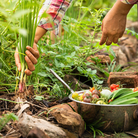 Ricardo Haddad Musi analiza la gastronomía sustentable en tiempos de pandemia