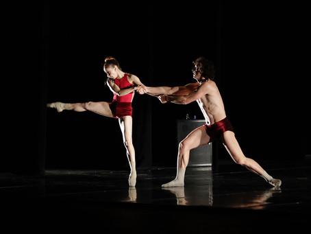 Convocan al proceso de selección para dirigir la Academia de la Danza Mexicana