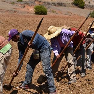 Geoparque Mundial UNESCO de Oaxaca es referente para resistir el cambio climático