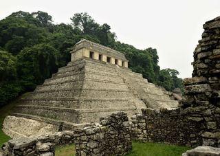 Abrirá la Zona Arqueológica de Palenque, bajo protocolos sanitarios