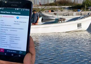 Arranca el formato digital para permiso de pesca comercial en embarcaciones mayores y menores