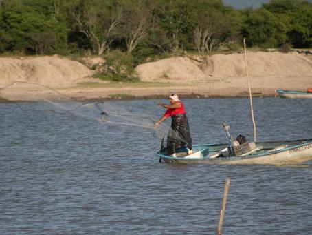 Retiene Conapesca, de manera precautoria, más de 109 toneladas de producto pesquero