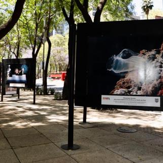 """En Reforma se exhibe la exposición """"Innovaciones y Descubrimientos de Israel para el mundo"""""""
