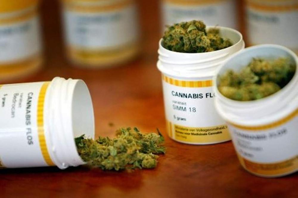 Cannabis en uso médico