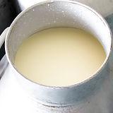 Świeże mleko krowy
