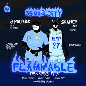 Housing Area - Flammable Pt. 2