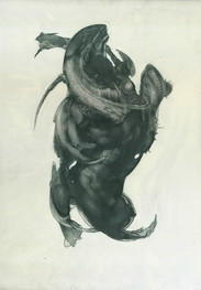 MetamorphosisNo5
