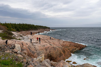 Canada Tour to Cabot Trail Group Coastal View Exploration