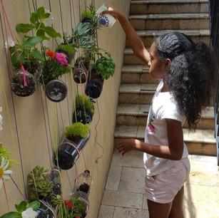 peacecamp plants_edited_edited.jpg
