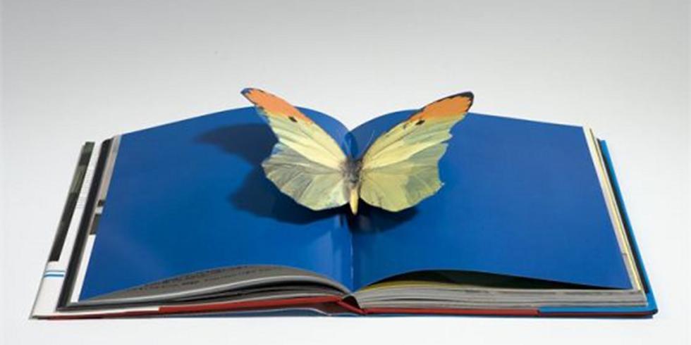 LLIBRES INTERVINGUTS I POESIA REVELADORA (art amb llibres)