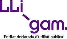 LLIGAM.png