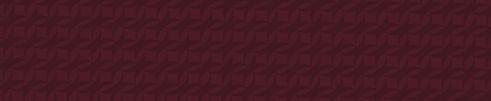 Colour stripes-Maroon-01.jpg