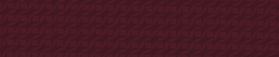 Colour stripes-Maroon-01.jpg