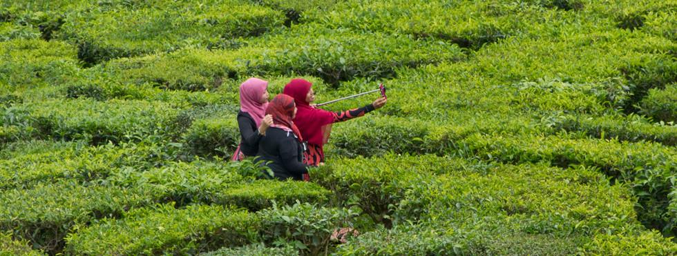 Friends taking a selfie photo in a tea plantation in Malaysia