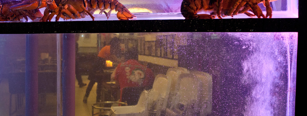 Gourmet lobster and seafood restaurant in Singapore