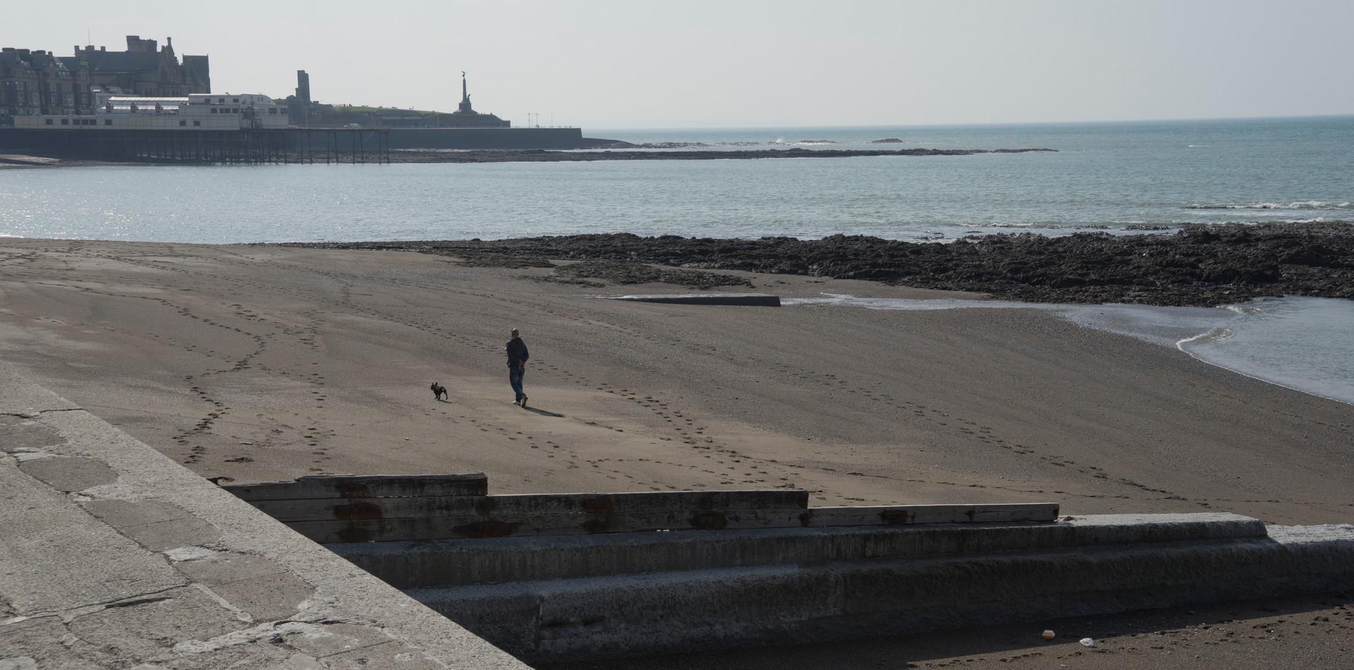 Walking a dog in a deserted beach