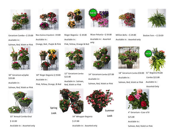 picture of flowers order form jpeg.jpg